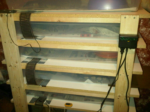 how to install heat on reptile rack triptoday00