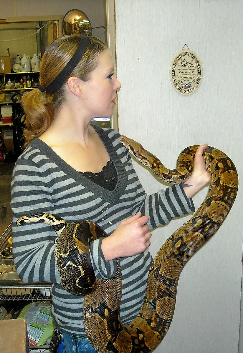 Red Tail Boa Bite me And an 8 ft Red Tailed Boa