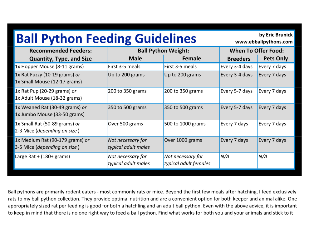 Ball Python Feeding Guidelines