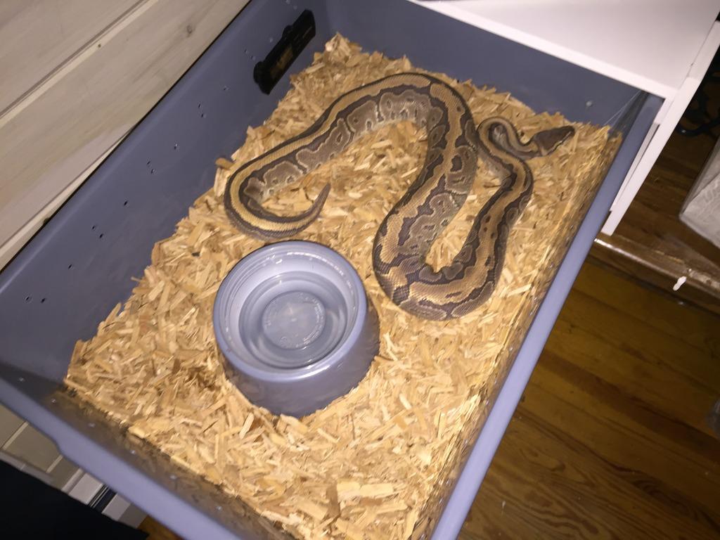 I need help setting up my tub/rack!!!