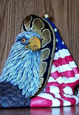 eagle-tail