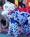 feb-07-blue-lion