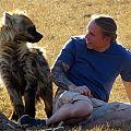 z04-13-hyena