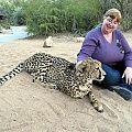 z05-01-cheetah