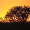 z05-24-sunset