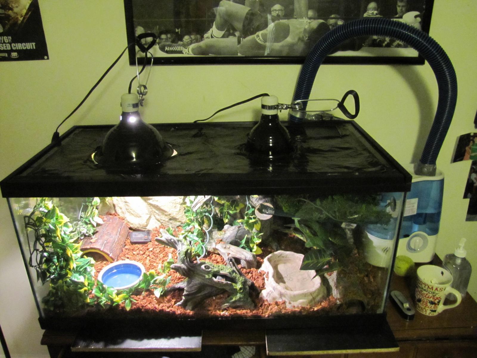 Python Aquarium
