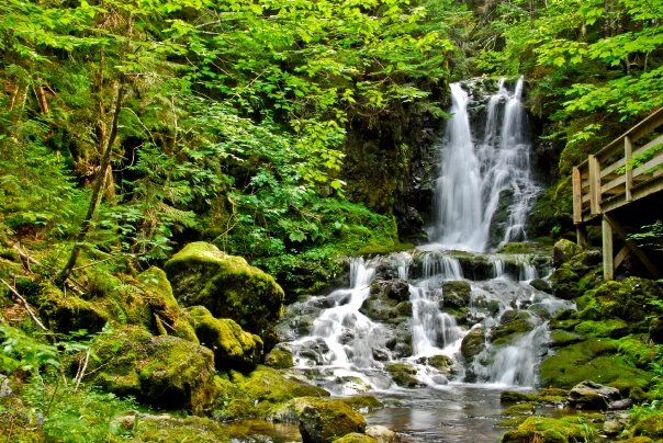 Waterfall - Fundy Bay National Park, NB
