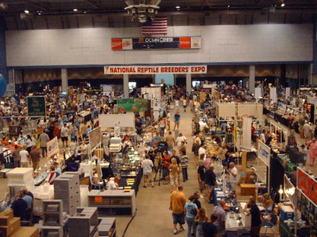 07 Daytona Breeders Expo