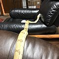 behira 890g - 5-18 - stretched between two chairs partial body