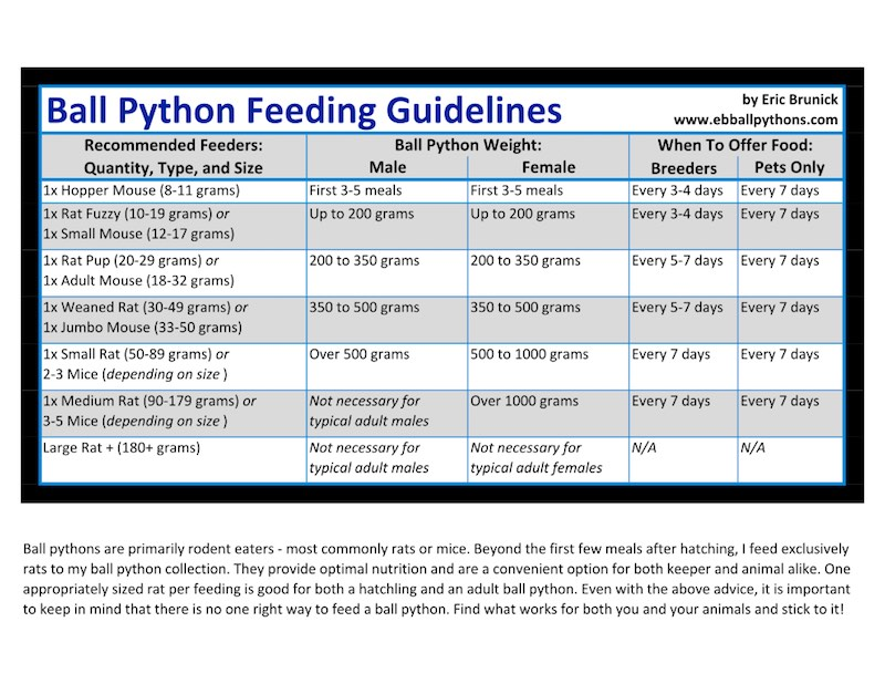 bp feeding chart