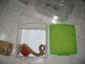 Caramel in tub