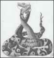 Python tango